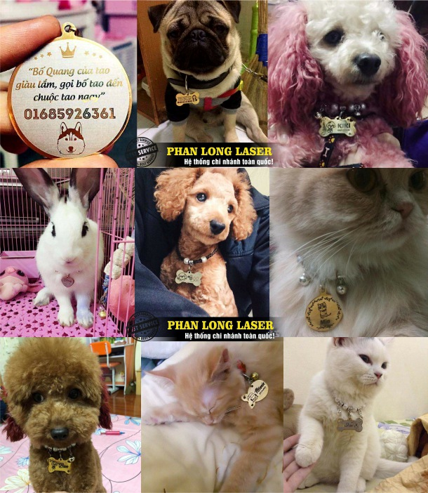 Địa chỉ cơ sở nhận làm thẻ tên cún cưng, mèo cưng, thú cưng, làm mặt vòng cổ cho thú cưng giá rẻ